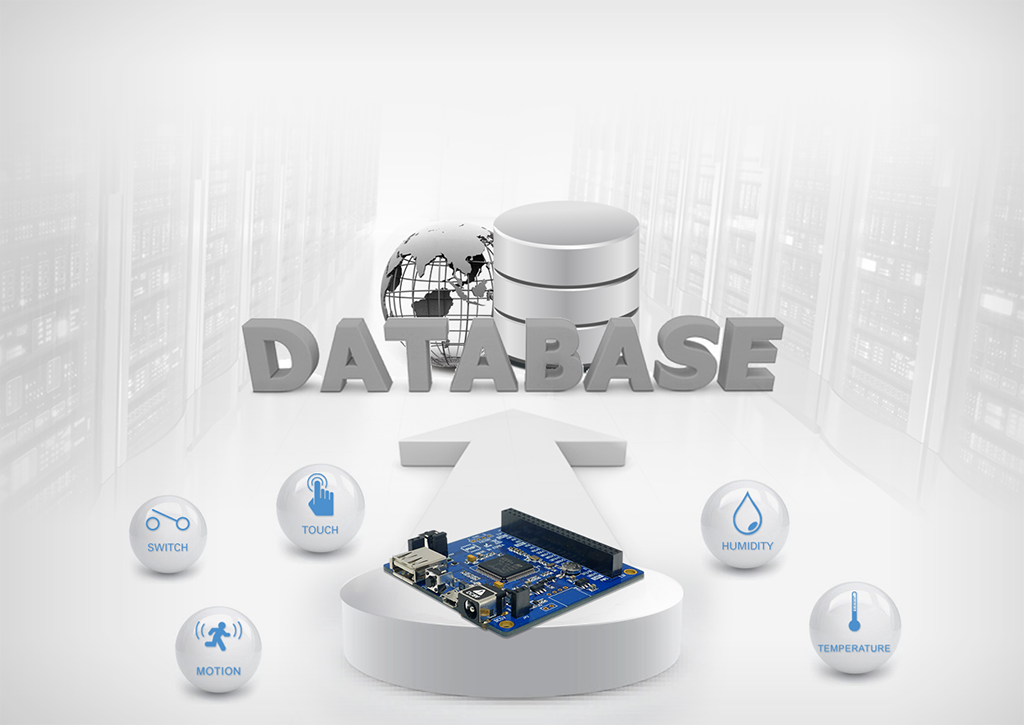 Database(MySQL) Support